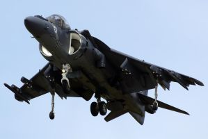 AV-8B Harrier 2 by shelbs2