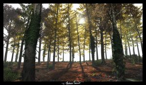 Autumn Forest by c-ramgfx