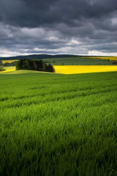 Colors Of Nature by MarcoHeisler