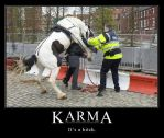 Karma by nywildlife22