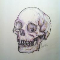 Copic Skull by mel0mania