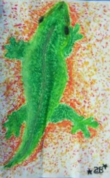 Fourth Of July Gecko by SaraBae