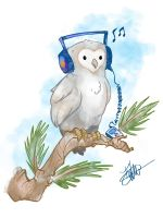 White owl Color SM by thailur