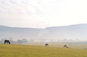 Riding on the Brecon Beacons by eclareee