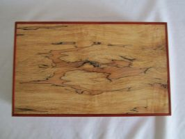 spalted maple by DMSscroller