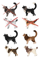 Cat point Adoptables [OPEN] by MestariTheMoth