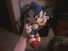Sonic plush toy by sonicfan40