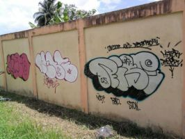 Riser Expo bombing by Riserist