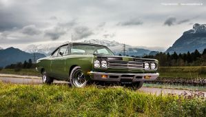 Road Runner by AmericanMuscle