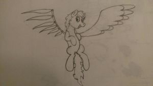 Wings OC by eillahwolf