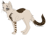 Cat Adoptable- Auction - CLOSED by xUnknownSpirit
