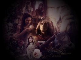 Once Upon Time Wallpaper 01 by Phoenixa86