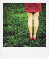Polaroid: Red and Green. by inbrainstorm