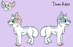 Aiden Reference Sheet by Schuffles