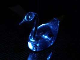 The Swan of glass by Xercatos