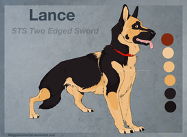 STS Lance by WagginKennelClub
