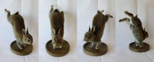 Jumping rabbit lifesize mount SOLD by DeerfishTaxidermy