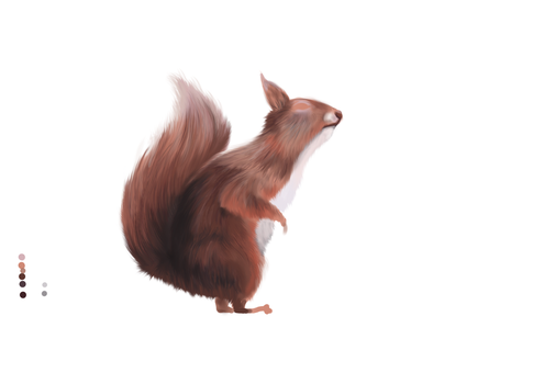 Red squirrel  2nd wip by AliMacArt