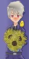 APH - Sunflowers for you by Mizuka-san