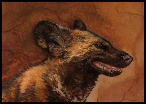 Wild Dog ACEO by Black-stag