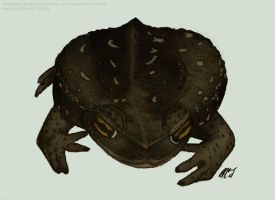 Mortie, The Rococo Toad by TerribleToadQueen