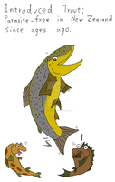 Parasite-free trout by The-Episiarch