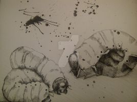 AP Drawing Concentration 5 (2012-2013) by InsaneRasberry