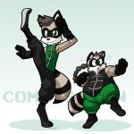 Kung Fu Raccoon Bros for tcgamerboy2002 by rongs1234