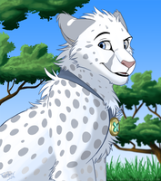 African Snow -gift- by KaiserTiger