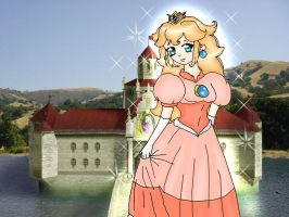 Princess Peach Stage Complete by Jago-Mizukami