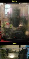 Before and After Fish Tank by Ultralee0