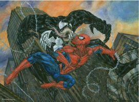 00 Spider-Man vs Venom by bushande
