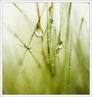 drops by mikeb79