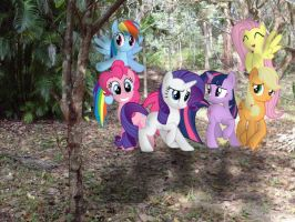 MLPIRL: Family Hike by artisticequines