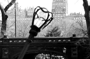 NYC Central Park Lamp by icreatedesigns