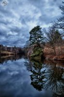 Deep Refelections by Creative--Dragon