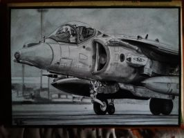 BAe AV-8B Harrier drawing by alainmi