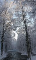 winter time by KariLiimatainen
