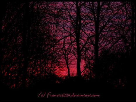 Red Sunrise by Francis1224