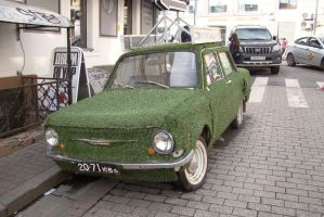 Grassmobile 3 by Panopticon-Stock