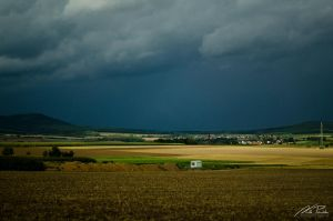 Lonely In The Fields by NicPi