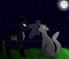 The Night's Still Young by OyopsOfPoyo2013