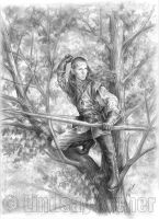 Elven Archer by LinzArcher