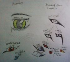 Eyes my oc's have by xXDEATHtheANGELXx