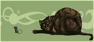 Chubby Kitty by Nicay
