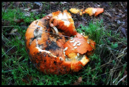 Rotted Pumpkin by some-emo-kid