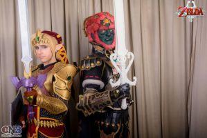 Link and Ganondorf 01 by drkitsune