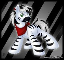 Secret Santa 2012 - Zuhri, the Zebra by SkyHeavens