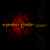 A Perfect Circle aMOTION cover by teews666