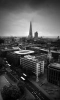 View from the Top II by TamarViewStudio